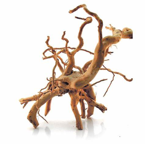 Spider Drift Wood 8 - 12 inches